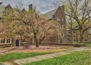 Princeton pic